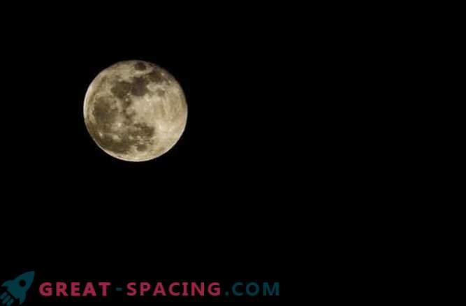 Pink Moon? Más como una mini-luna