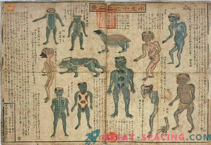 La exhibición de 200 años del Museo Japonés se parece a una criatura mitológica Kapp. Versión ufologov