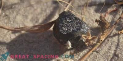 Fragmento del asteroide de impacto encontrado en Botswana