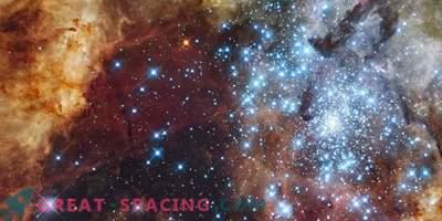 Caos en las nubes de nacimiento estelar. ¿Qué está mal con las ondas magnéticas?