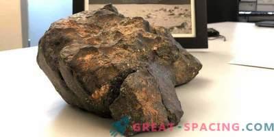 El meteorito lunar se vendió por $ 600,000