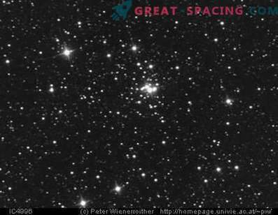 New information on open cluster IC 4996
