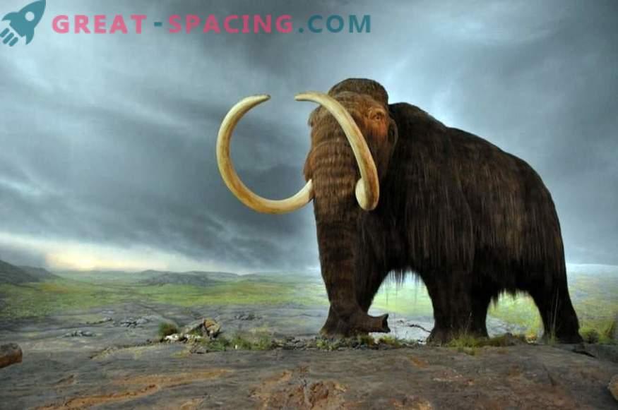 ¿Podría un cometa hace 10.000 años haber sido capaz de destruir una megafauna