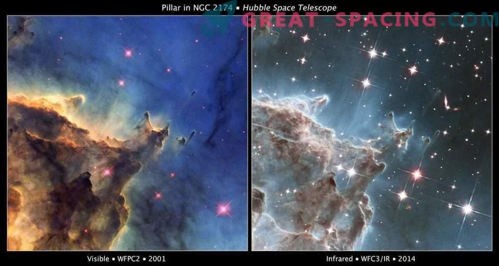 Efecto de los vientos estelares en la Nebulosa Cabeza de Mono