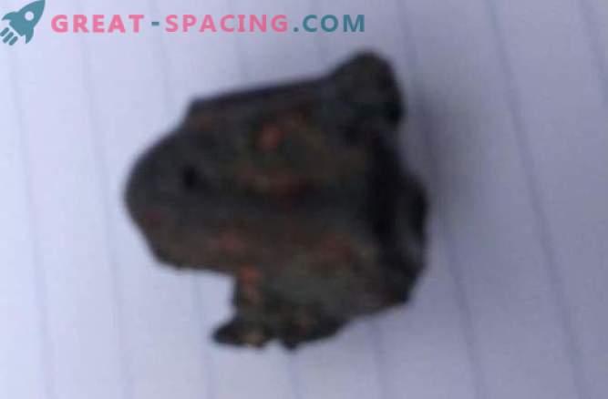 Un meteorito no mató a una persona en India