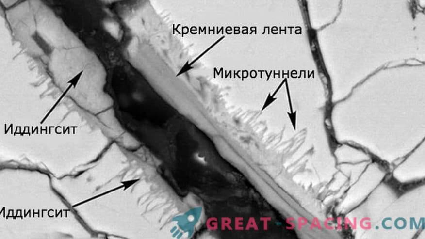 La vida se detecta en muestras de un meteorito marciano