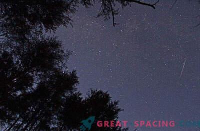 Transmisión en vivo de la lluvia de meteoros Leonid